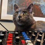 CatSynth Pic: Fern and Behringer Model D