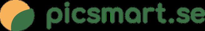 Picsmart company logo