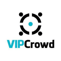 VIP Crowd company logo