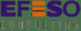 EFESO Consulting company logo