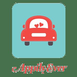 AppilyEver company logo