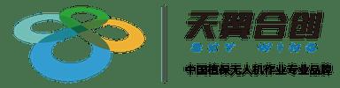 Sky Wing company logo