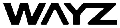 Wayz.ai company logo