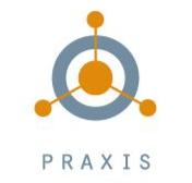 Praxis company logo