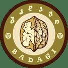 Badagi company logo