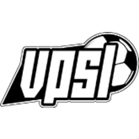 VPSLeague company logo