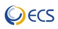 Enterprise Consulting Services company logo