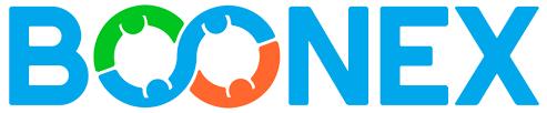 BoonEx company logo