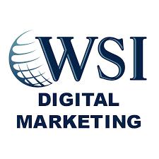 WSI company logo