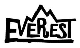 Everest company logo