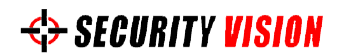 Security Vision company logo
