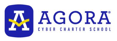 Agora Cyber Charter School company logo