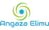 Angaza Elimu company logo
