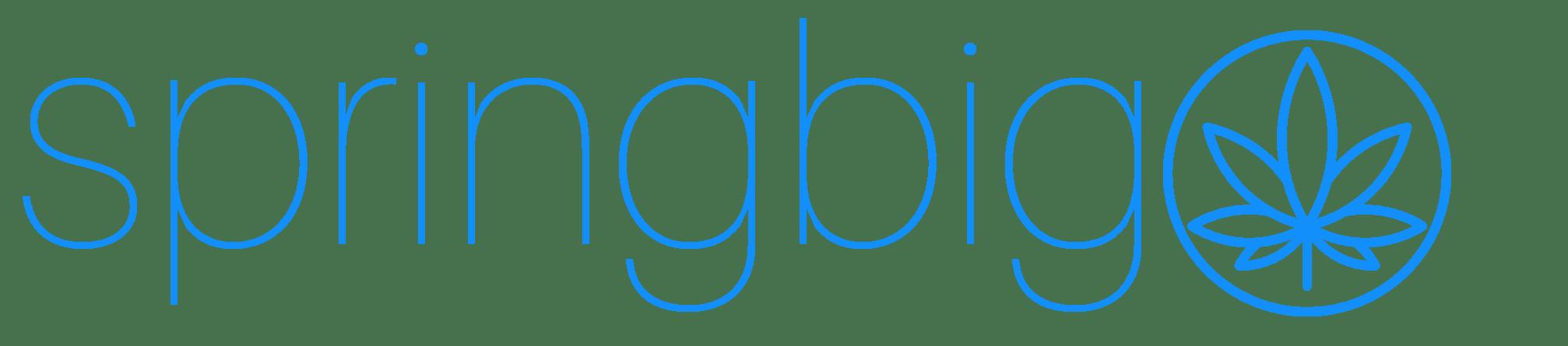 springbig company logo