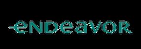 Endeavor Scale Fintech company logo