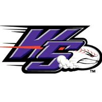 Winston-Salem Dash company logo