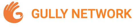 Gully Network Retail company logo