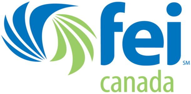 FEI Canada company logo