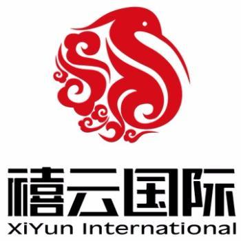 Xiyun International company logo