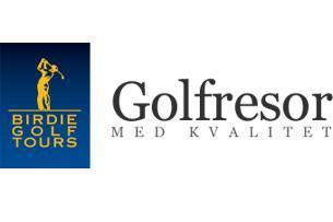 Birdie Golf Tours company logo