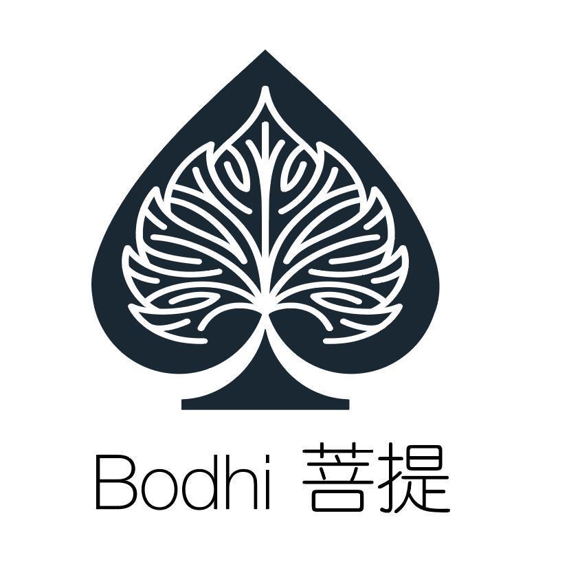 Bodhi Network company logo