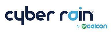 Cyber Rain company logo