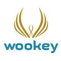 Wookey Technologies company logo
