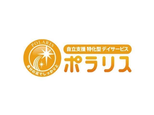 Polaris company logo