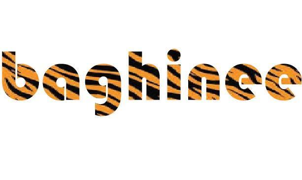 Baghinee company logo