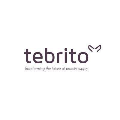 Tebrito company logo