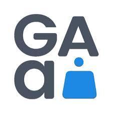 Gaming Analytics company logo