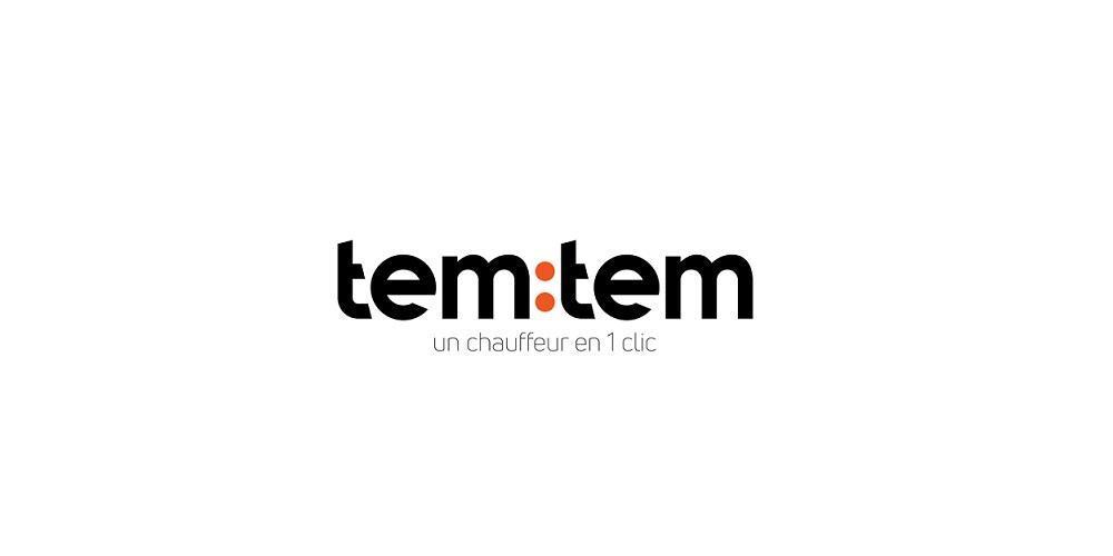 tem:tem company logo
