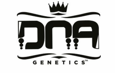 DNA Genetics company logo