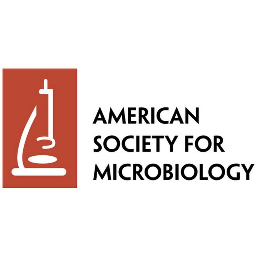 ASM company logo