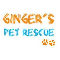 Ginger's Pet Rescue company logo