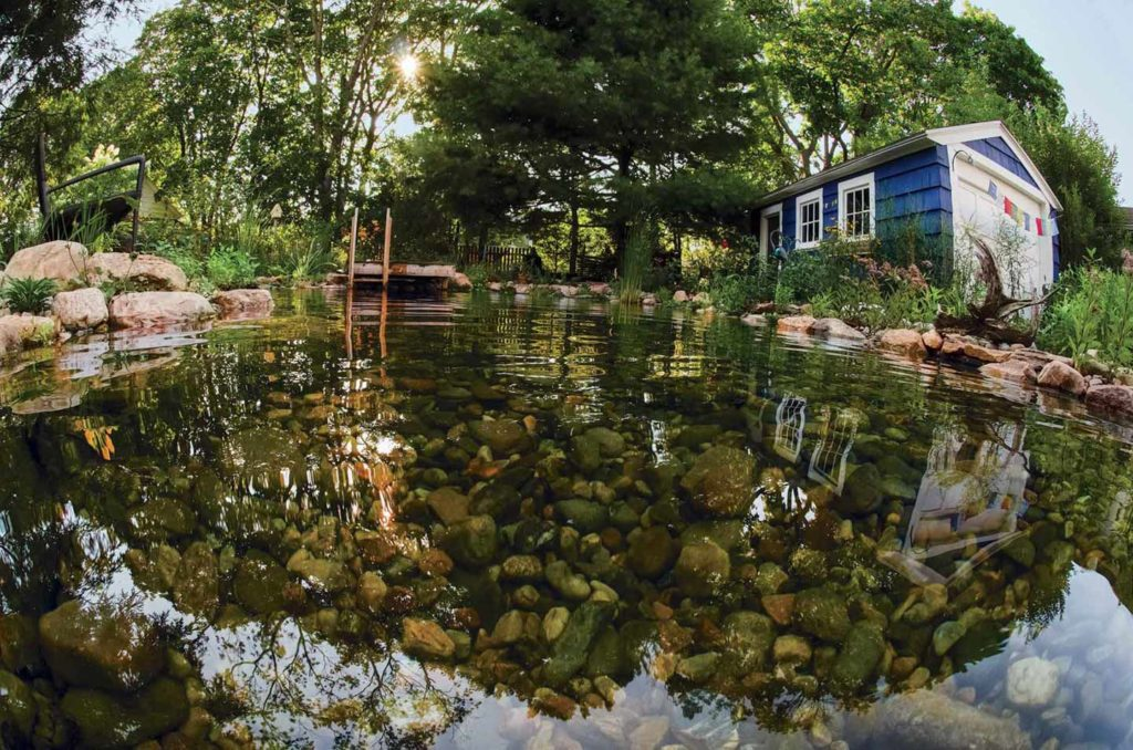 The pond features an ankle-deep shallow end and a 5-foot-deep area by the dock.