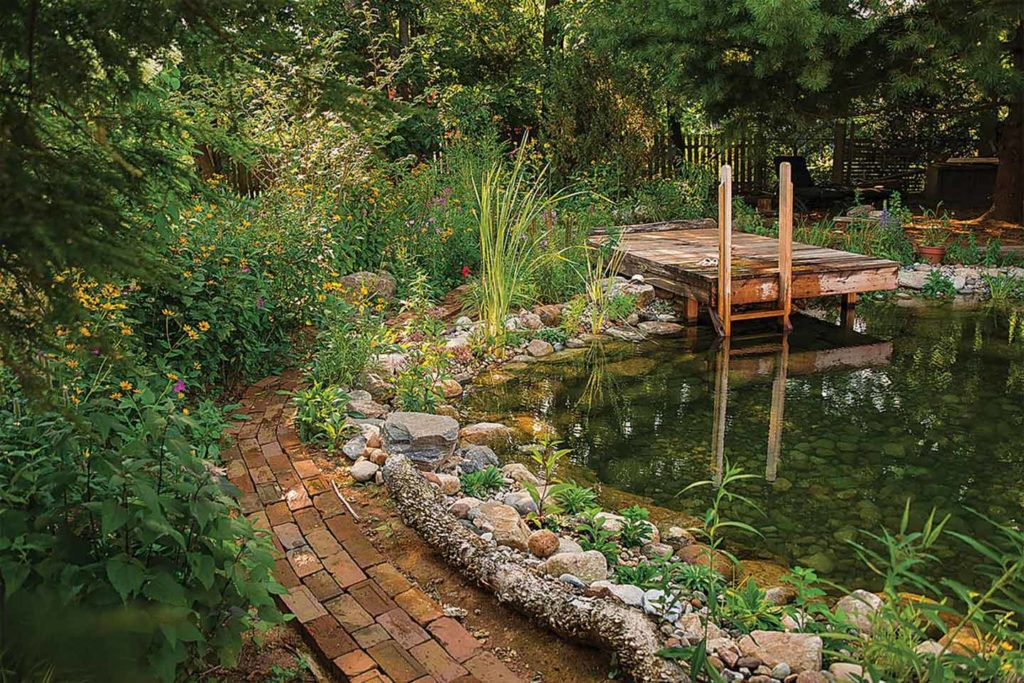 Wildflowers, a passion of Peters', make the perfect pond accessory.