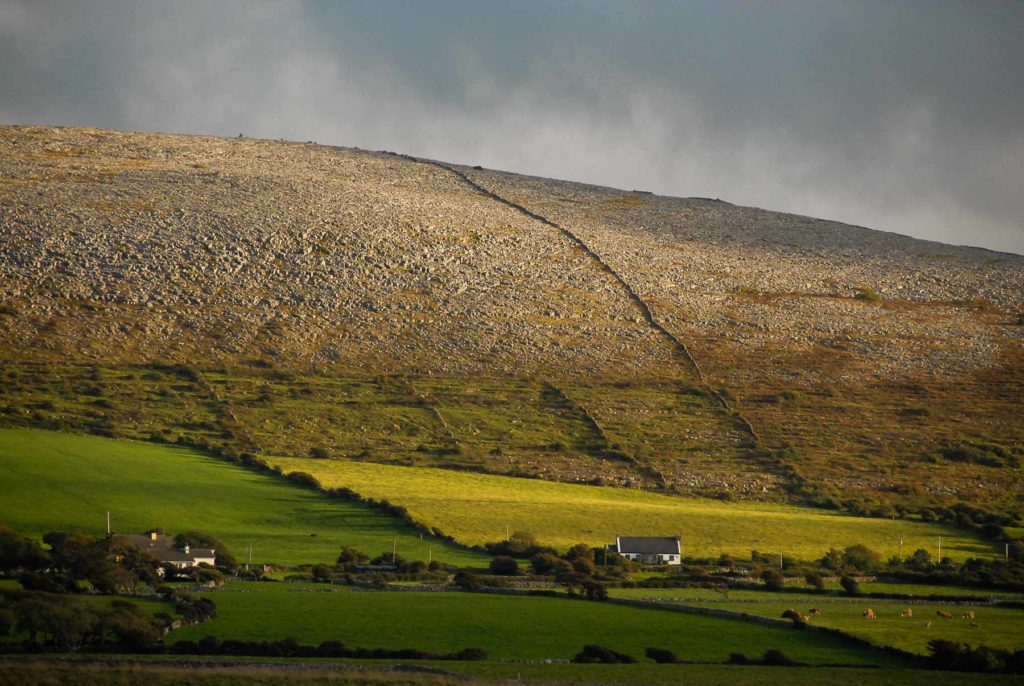 Contemporary farming practices occur on ancient lands of the Burren. The light impact of the Burren's farm practices has preserved stone age artifacts from farmers working up to 6,000 years ago.