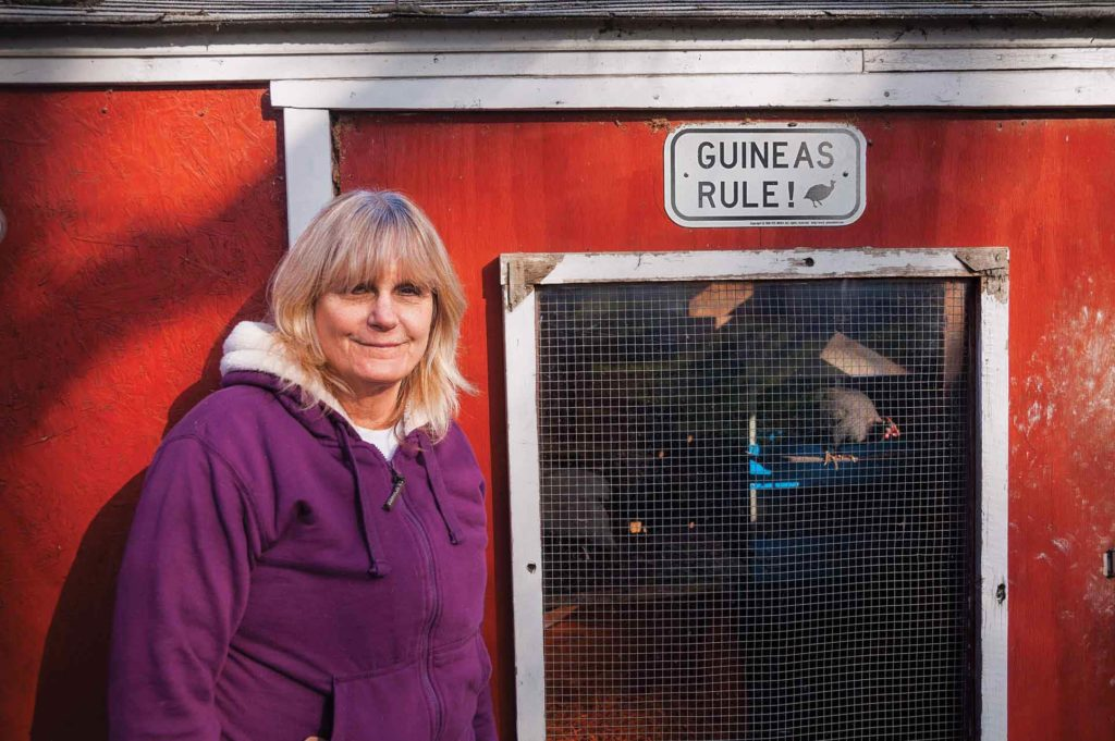 Susan Burek has many items around her farm to show her allegiance to the guinea, a quirky, odd looking bird.