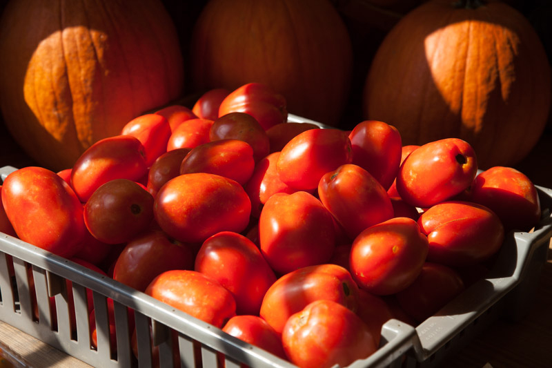 Barbee Farms sells nearly 60 kinds of vegetables at their North Carolina market space.