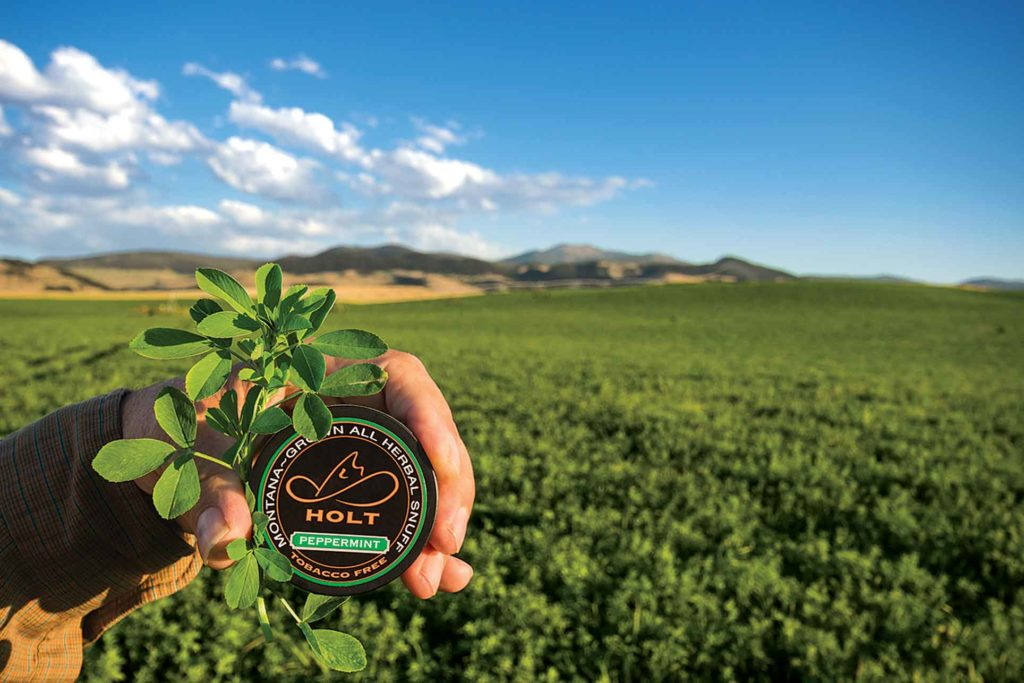 Holt uses shorter, leafy alfalfa varieties harvested prebloom second cutting at midday when plant sugars are high.