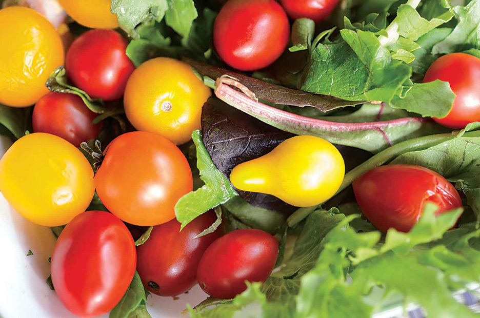 Mini tomatoes straight from the home garden make a colorful, tasty addition to any salad.