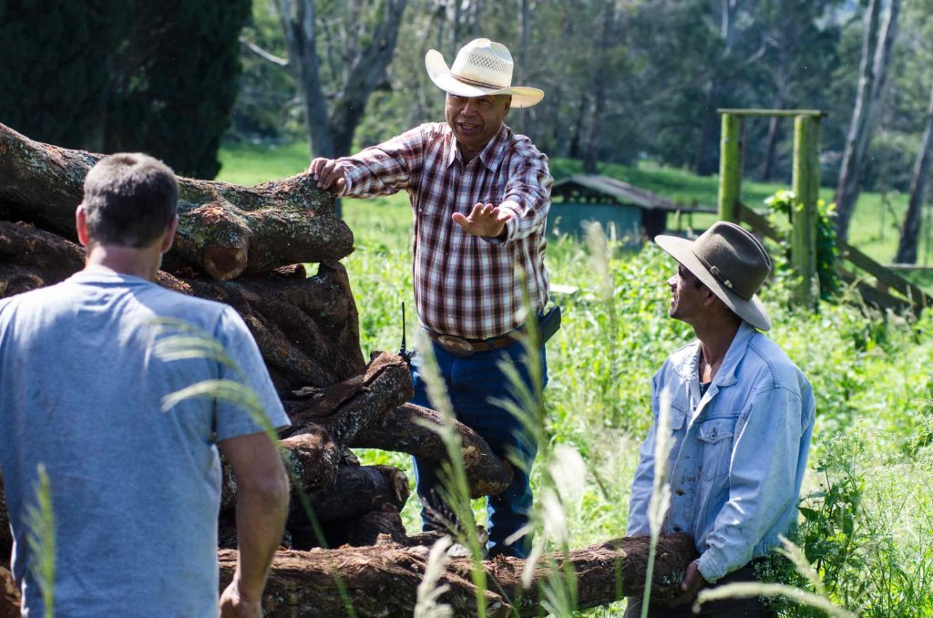 Workers talk through the days' chores at Ulupalakua ranch.