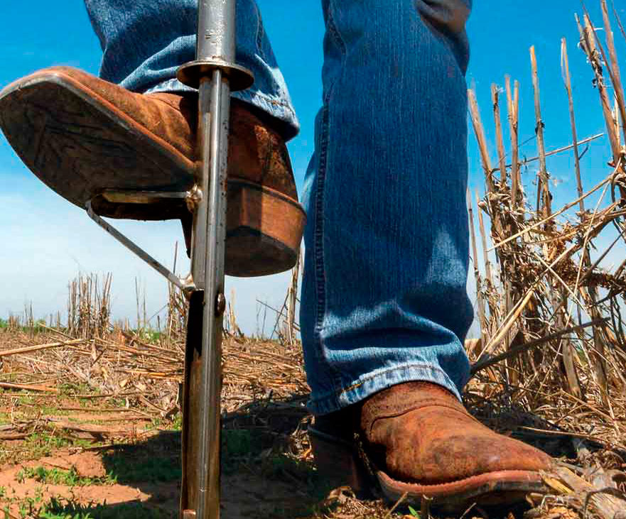 Good sampling procedures in the field are key to collecting an accurate soil sample.