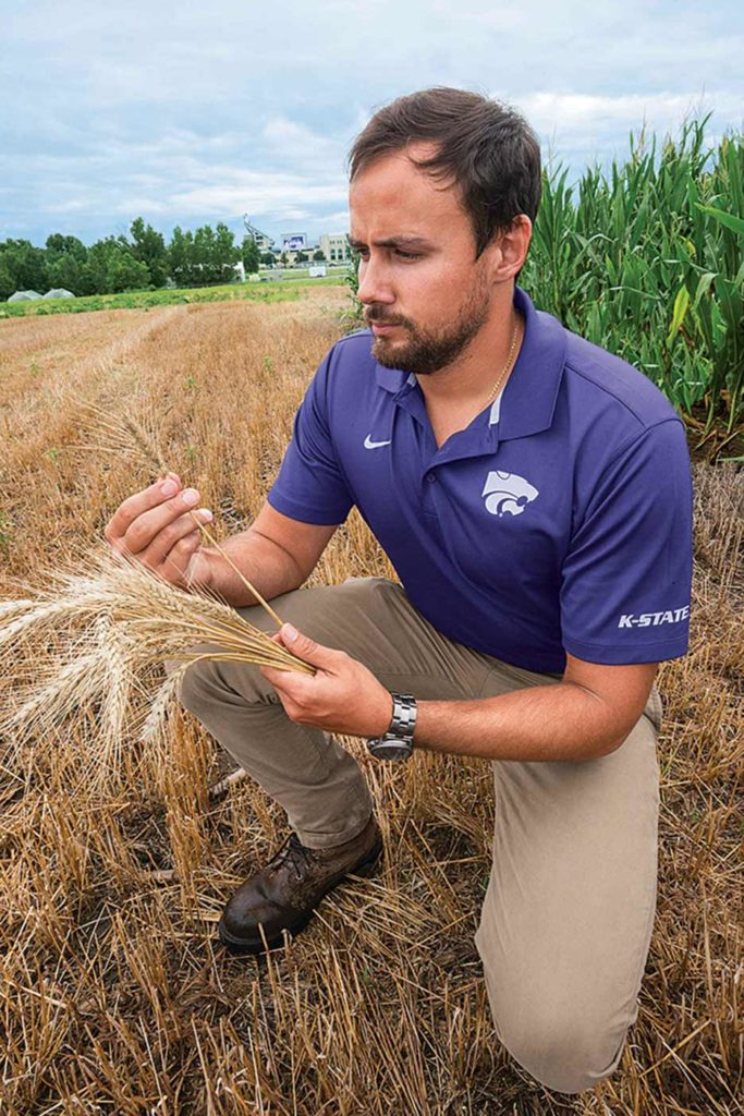 Kansas State's Romulo Lollato is working with a team of researchers to fine-tune the situations where intensive wheat management can be profitable.