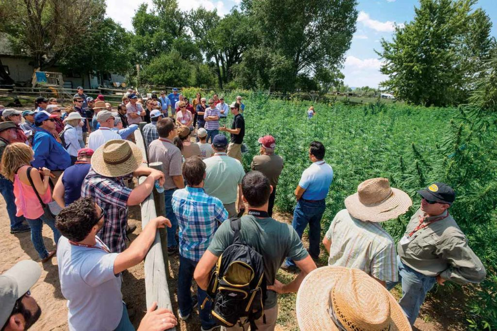 Researchers from dozens of universities listen to Colorado State's John McKay discuss variety development during a recent tour.