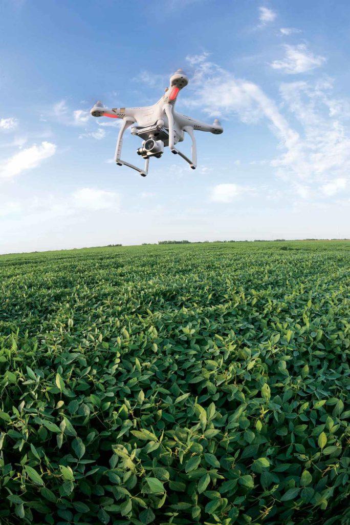 Les drones donnent une vue rapide du champ mais la réglementation limite leur capacité.