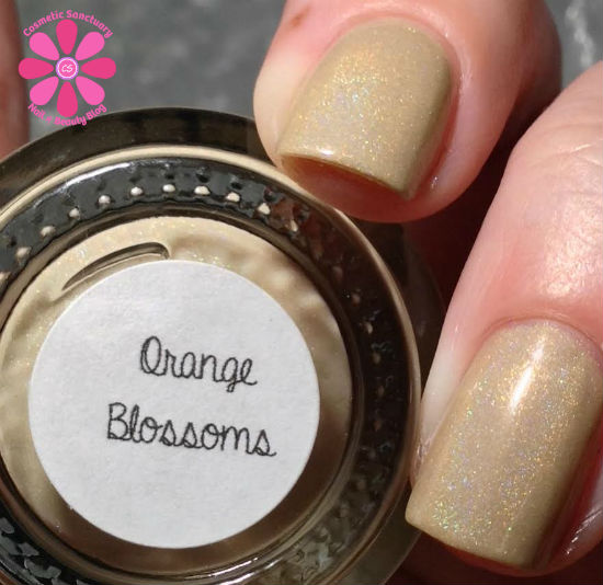 Orange Blossoms AL CU
