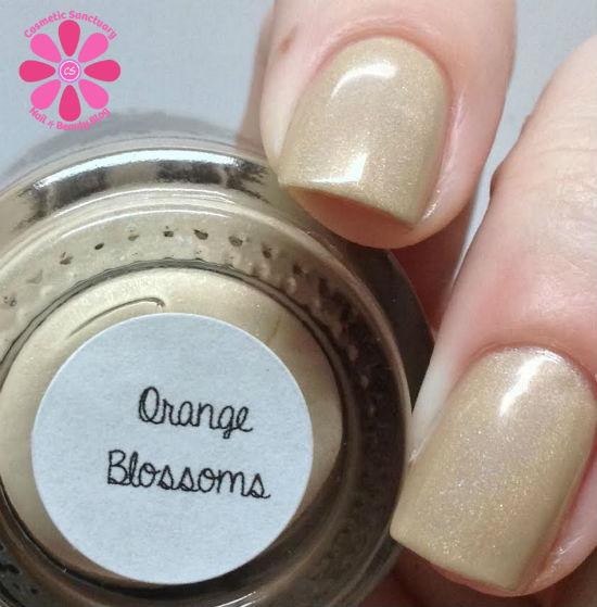 Orange Blossoms CU