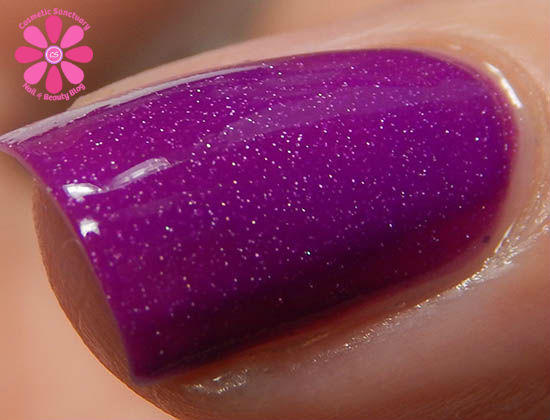 Playful Purple cold  macro